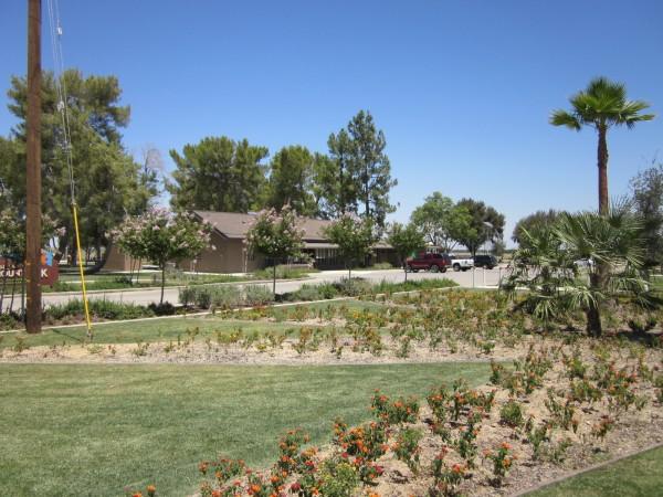 Lost Hills Park
